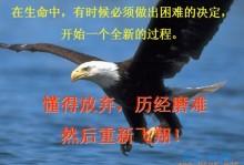 【励志短片】鹰之重生