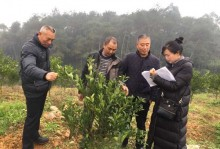 农业专家助力东坡区新型职业农民培训