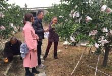 彭山区2018年新型职业农民培训跟踪服务开始啦