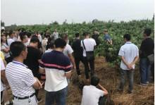 仁寿县2019年新型职业农民培育学员外县参观考察