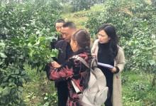 丹棱县新型职业农民(水果种植)培训班开展后续跟踪服务